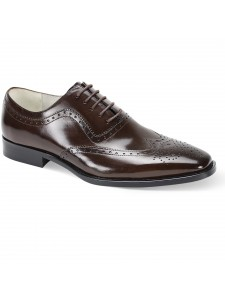 Ferrara Lace-Up Men's Shoe by Giovanni - Chocolate Brown