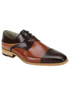 Hudson Men's Shoe by Giovanni - Choc Whiskey Tan