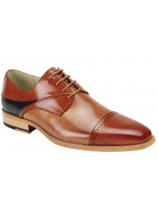 Hudson Men's Shoe by Giovanni - Whiskey Tan Navy