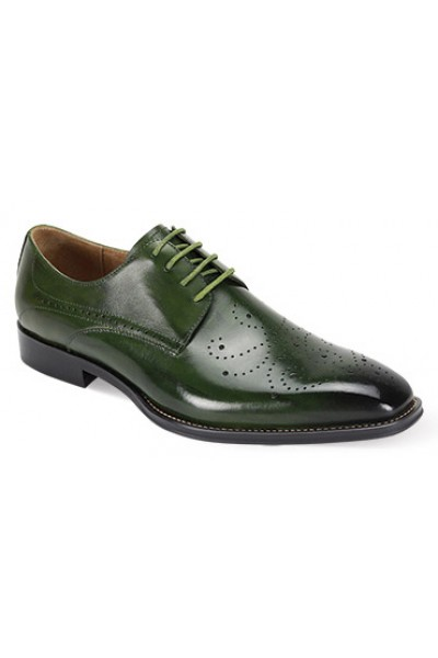 Joel Men's Shoe by Giovanni - Green